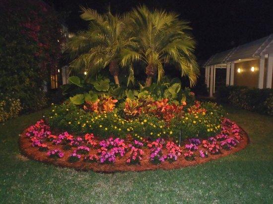 Ramada Naples:                                     Landscaping