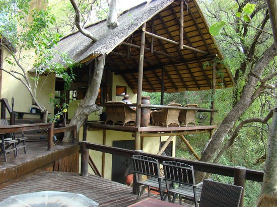 Pondoro Game Lodge:                   comedor en el  canopy