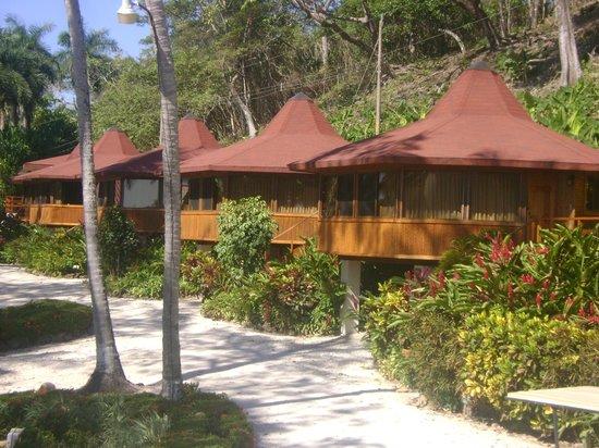 Tango Mar Beachfront Boutique Hotel & Villas:                   bungalows enfrente de las habitaciones standard