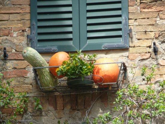 Agriturismo Cretaiole di Luciano Moricciani:                   Fall humor