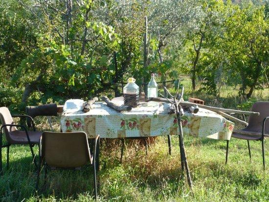Agriturismo Cretaiole di Luciano Moricciani:                   setting along a country road