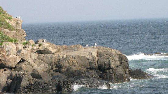 Cape Neddick Nubble Lighthouse:                   View from nubble