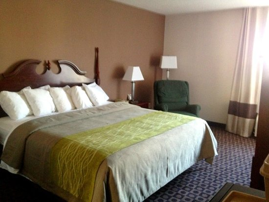 Comfort Inn Near High Point University: Newly Renovated King 2013