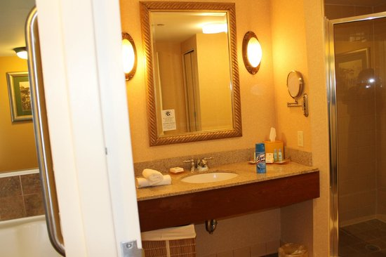 Chesapeake Beach Resort and Spa:                   Bathroom