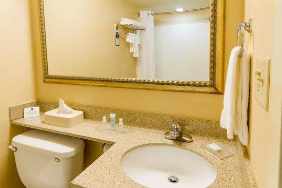 BEST WESTERN PLUS International Speedway Hotel: Bathroom Vanity