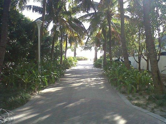 Townhouse Hotel:                   El acceso a la playa a 30 metros del hotel