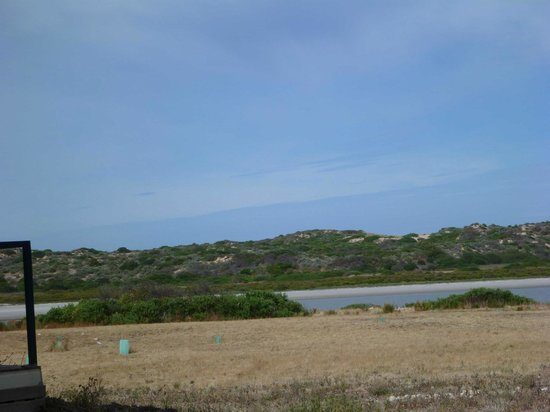 Coorong Wilderness Lodge:                   A room with a view!