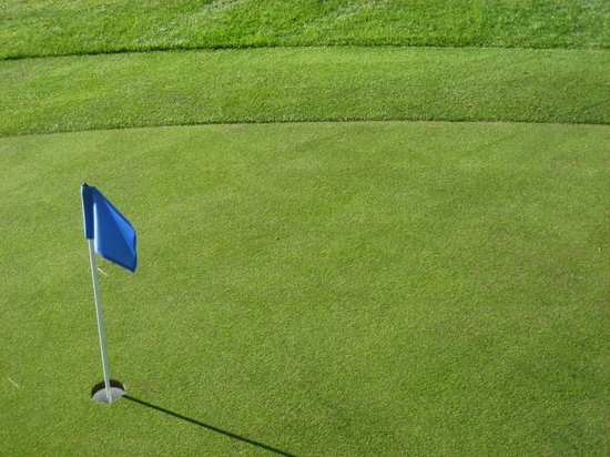 Plantation on Crystal River:                   close up of putting greens