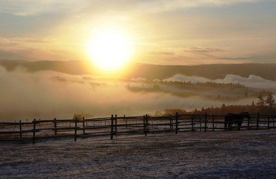Dreamscape Ranch:                   fabulous sunrise <3