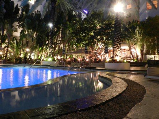 The Raleigh Miami Beach:                   piscina