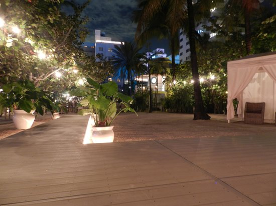 The Raleigh Miami Beach:                   area externa