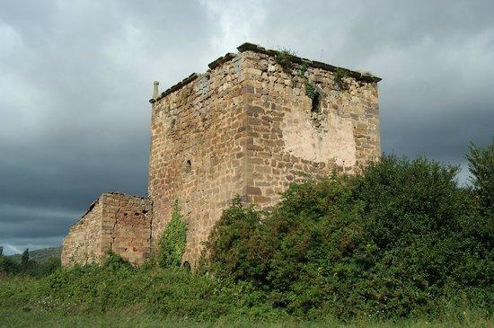 Centro de Turismo Rural La Coruja del Ebro: Torre Cadalso