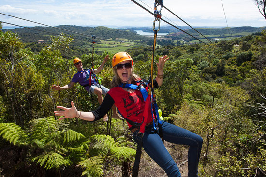 EcoZip Adventures