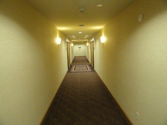 Homewood Suites by Hilton Bozeman:                   hallway