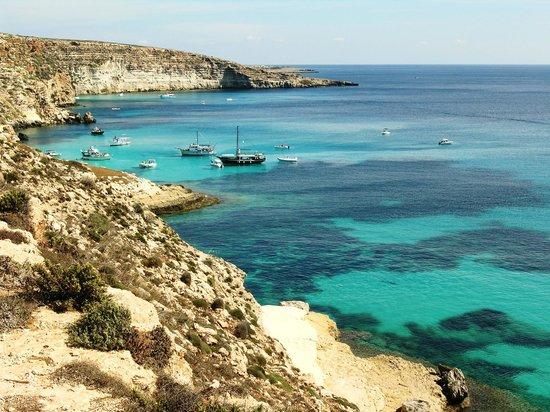 Isola dei Conigli:                   Baia dei Conigli Lampedusa