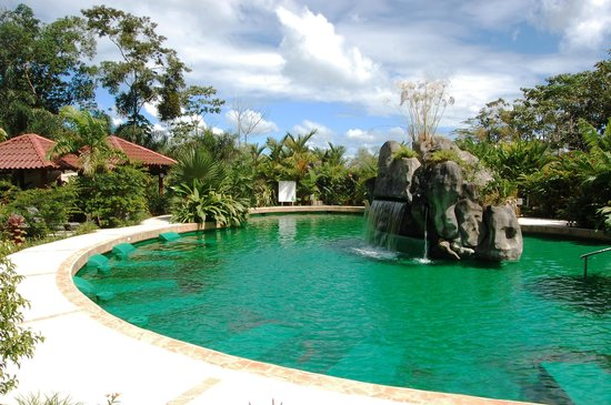 Paradise Hot Springs: Palma Real with a Clear Costa Rica Sky