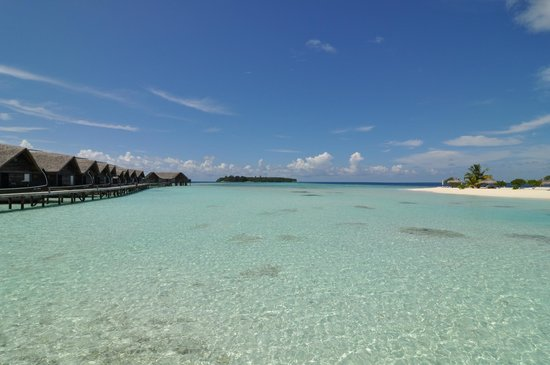 COMO Cocoa Island, The Maldives: Lagoon between the Suites and the island, loved to swim there