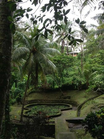 Agus Bali Private Tours:                   goa gajah, Elephant Cave Temple