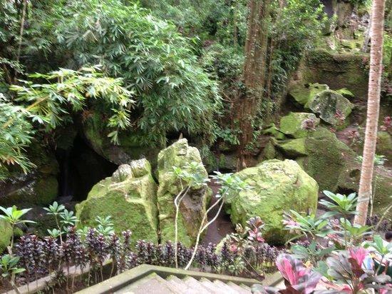 Agus Bali Private Tours:                   goa gajah, elephant cave temple
