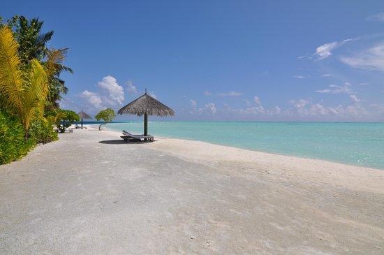 COMO Cocoa Island: Heavenly beach