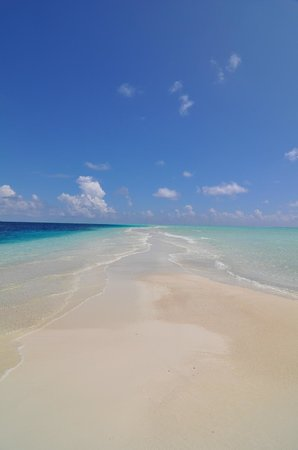 COMO Cocoa Island: Sandbank