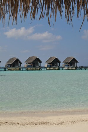 COMO Cocoa Island: Overwater Suites seen from the beach