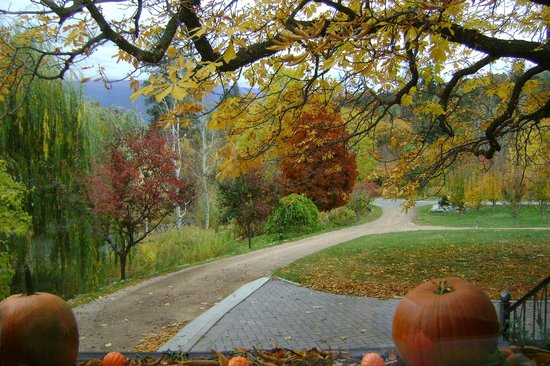Glenoka Farm Bed and Breakfast: Beautiful in the Fall