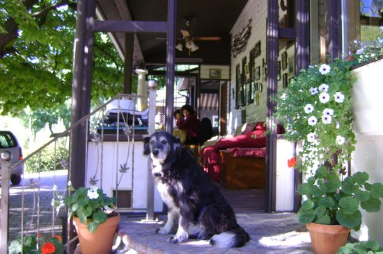 Glenoka Farm Bed and Breakfast: Sarah on the veranda