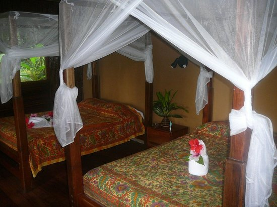 Luna Lodge:                   Inside view of a bungalow