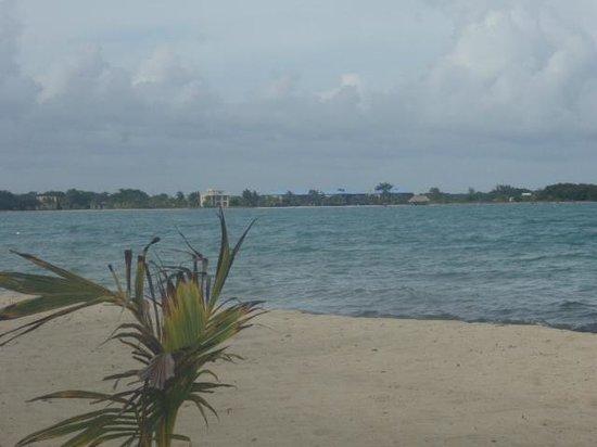 A Belizean Nirvana:                   Heaven every morning!