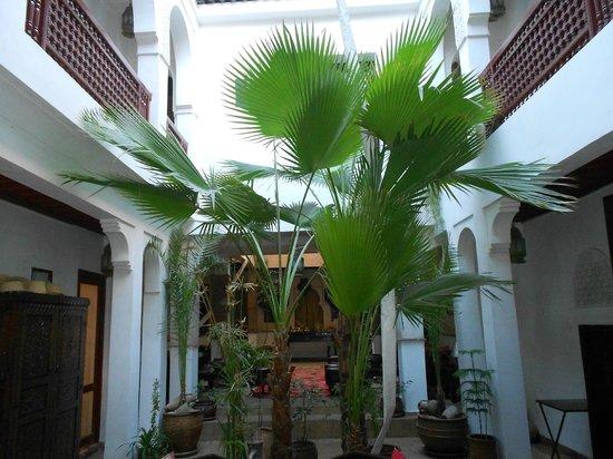 Riad Aladdin:                   courtyard