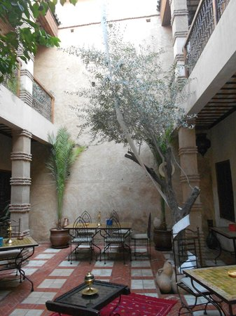 Riad Aladdin:                   outdoor courtyard