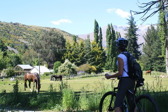 Queenstown Bike Tours: the scenery!