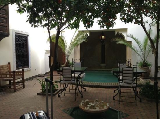 Riad Dar Dialkoum:                   garden