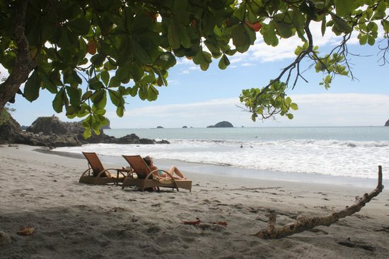 Arenas del Mar Beachfront & Rainforest Resort:                   Private Beach