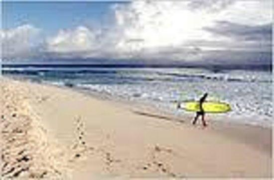 سكاي بيتش كلّب: Surfer's Beach! Snorkler's Beach & Diving!