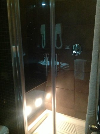 Daphne Inn Veneto:                   Shower