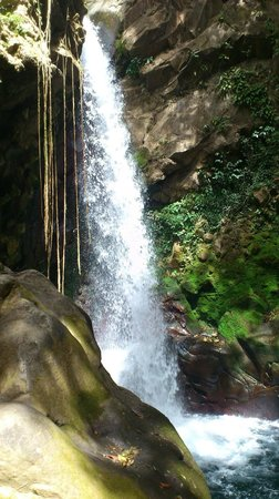 Hacienda Guachipelin:                   La Oropendola waterfall