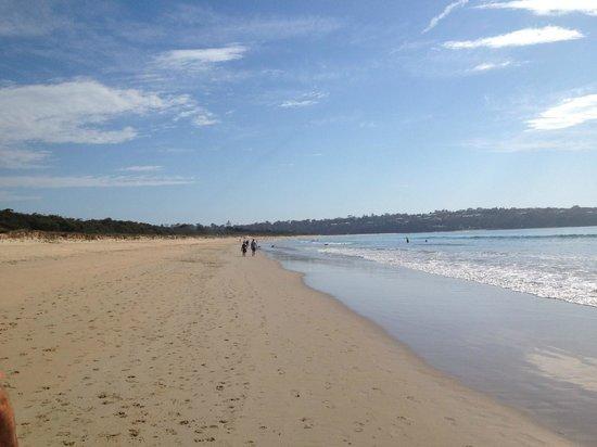 Seashells Apartments Merimbula :                   The beach, a 5 min walk from Seashells Apartments.