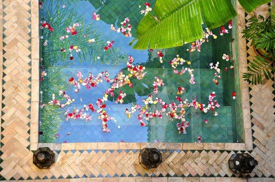 Riad Aguaviva: 005 petalos
