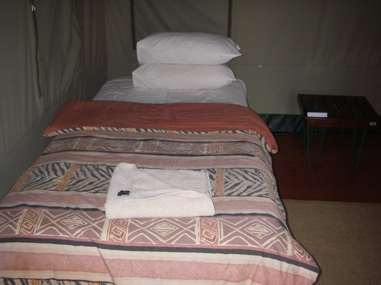 Golden Leopard Resort - Manyane:                   Bed in tent