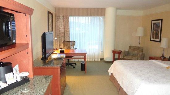 Hilton Garden Inn Montreal Centre-ville: Room: Deluxe King