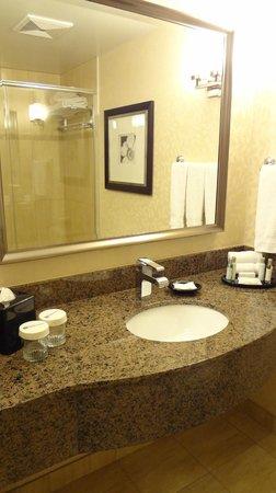 Hilton Garden Inn Montreal Centre-ville: Washroom