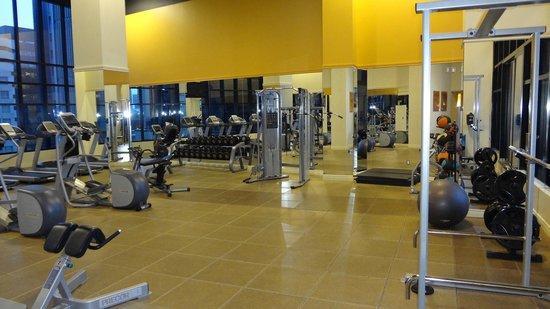 Hilton Garden Inn Montreal Centre-ville: Gym