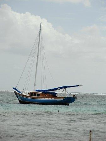Blue Tang Inn's boat