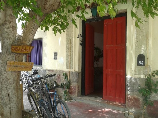 Casa Arbol:                   Frente