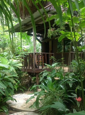 Red Frog Bungalows:                   Our bungalow