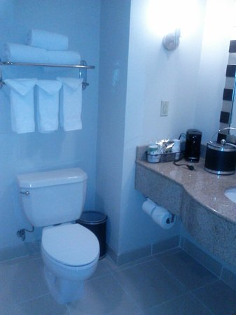 Hampton Inn Washington, DC - Convention Center: Bathroom 1