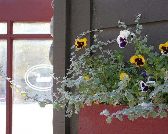 Inn on the Creek: Flower Box