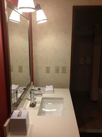 Wyndham Garden San Jose Silicon Valley: Mirror & sink outside bathroom.